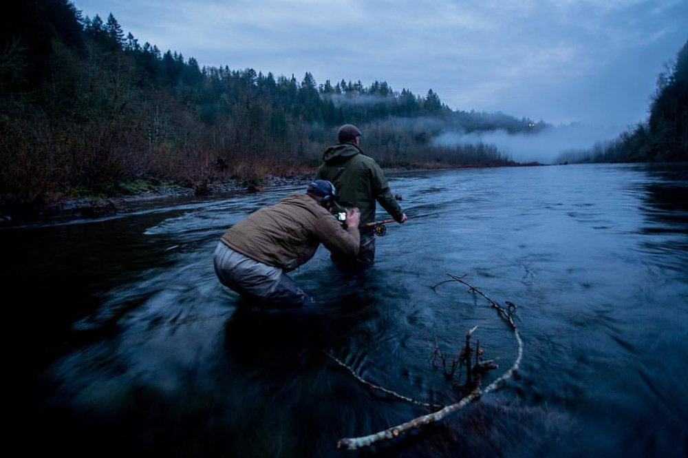 winter steelhead.jpg