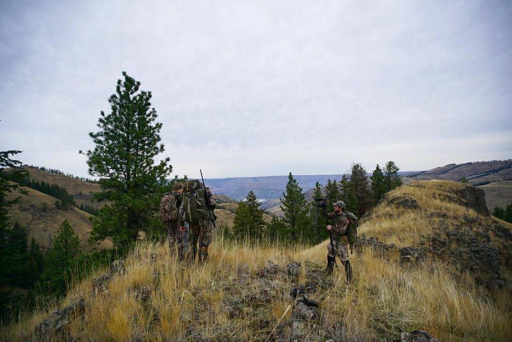 Jozey hunting7.jpg