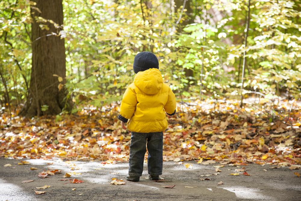 fall-2012-002.jpg