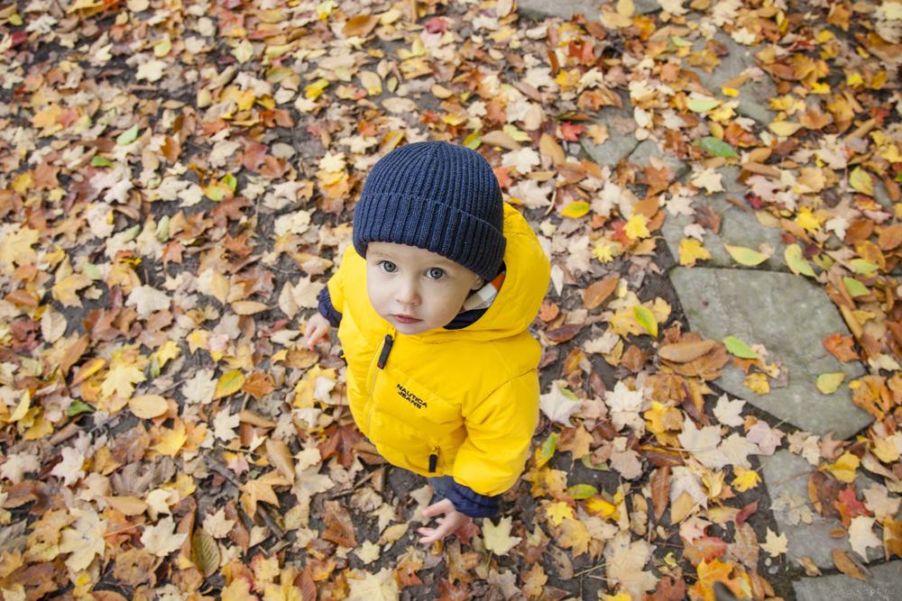 fall-2012-013.jpg