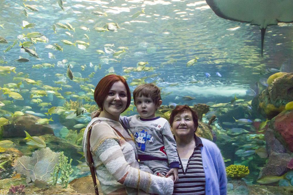 aquarium-018.jpg