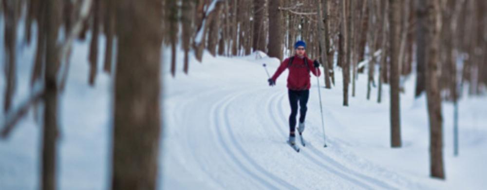 Learn-Snowsports-Skis-Nordic-Skis_v2_m56577569831497577.jpg