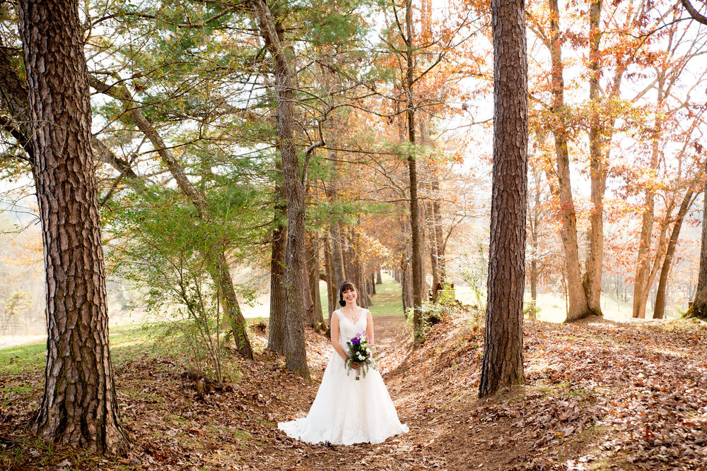 leslie doug yesterday spaces wedding asheville nc jennifer callahan photography-137-X3.jpg