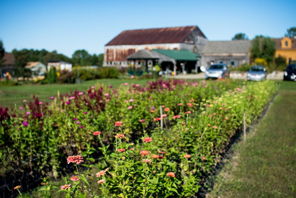 Field Floral Studio-32.jpg