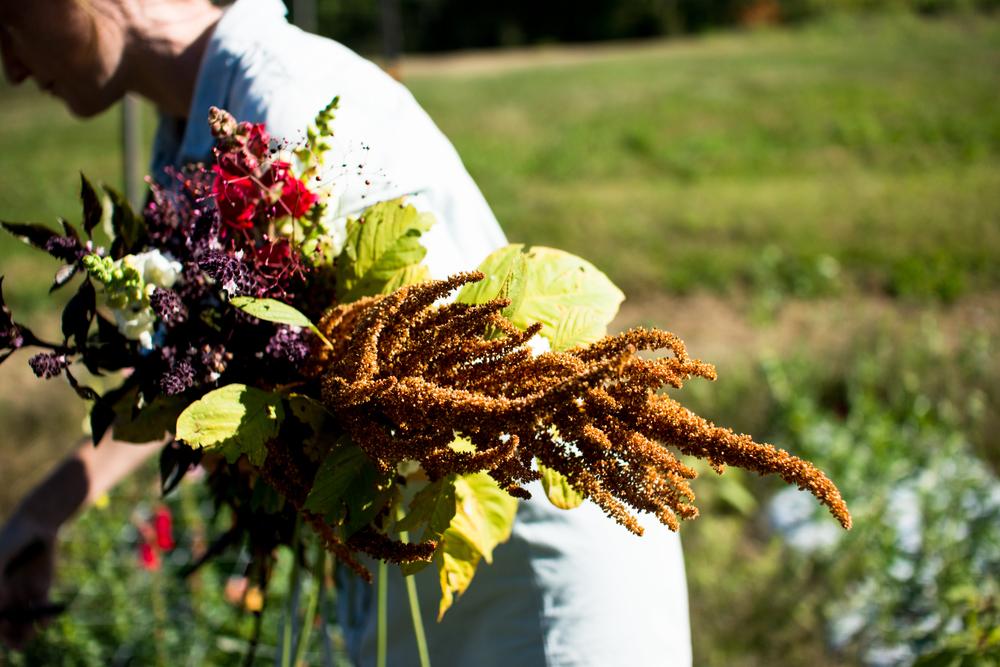 Field Floral Studio-16.jpg