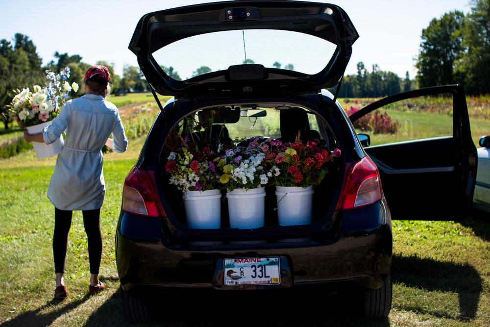 Field Floral Studio-1.jpg