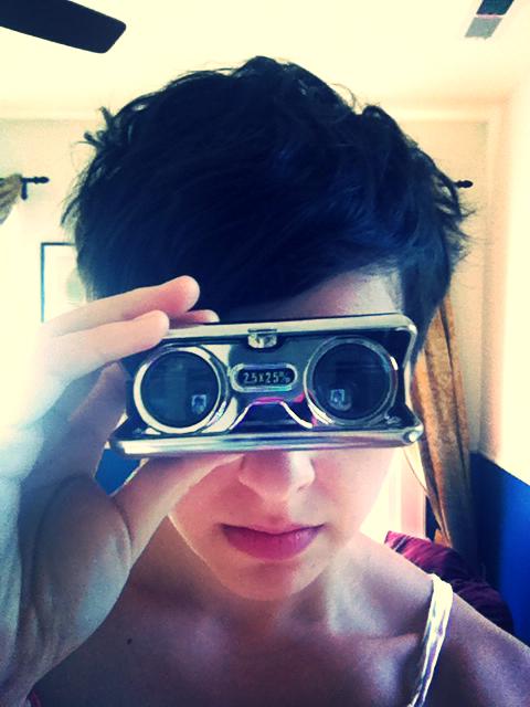 butterfly magnifiers.jpg