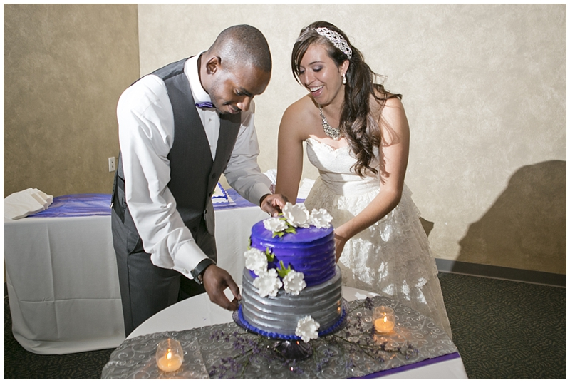 Purple and Silver Columbus Wedding_0056.jpg
