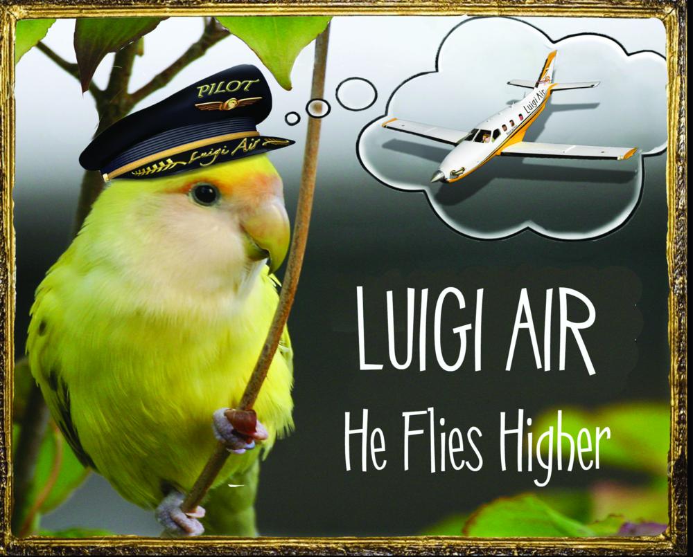 Luigi Air Small.jpg