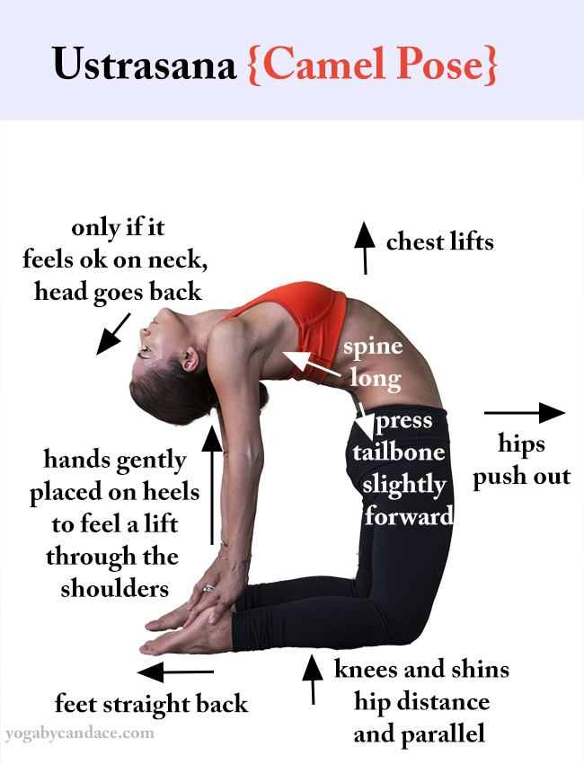 Click to enlarge tips for Camel Pose - pin it!