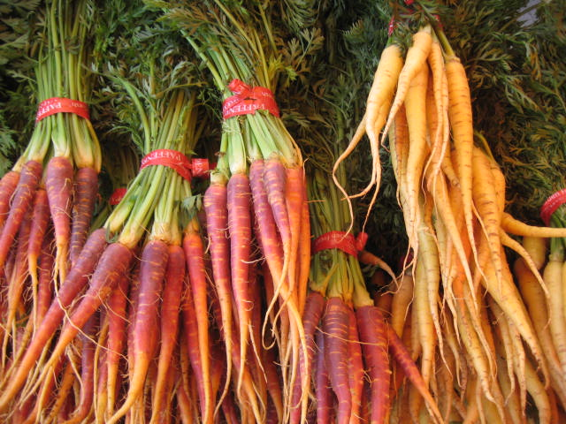 eastern carrots