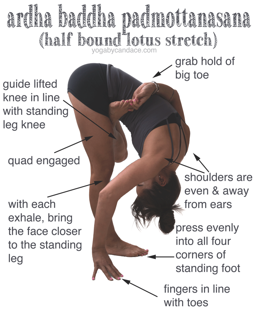Pin it! How to do ardha baddha padmottanasana. Wearing: Lululemon shorts (similar), F21 tank, Gap bra, essie boom boom room.