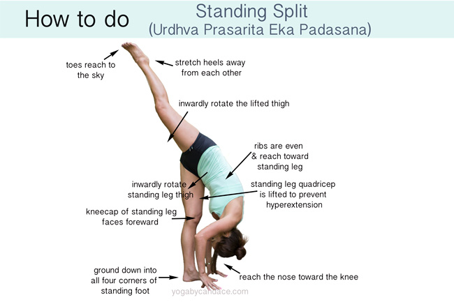 Woman doing standing split against white background, with text labels pointing to parts of her body and describing good form