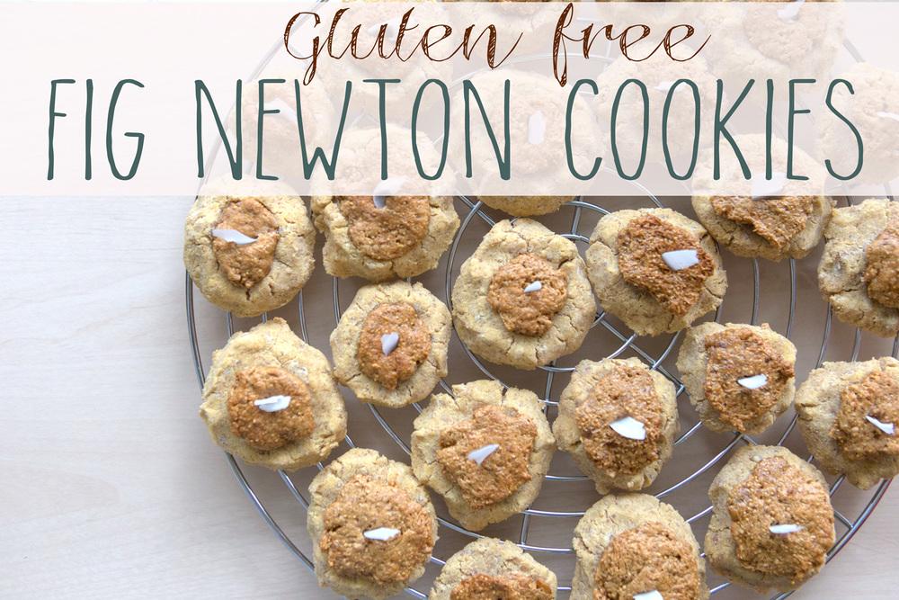 Gluten-Free Fig Newton Cookies — YOGABYCANDACE