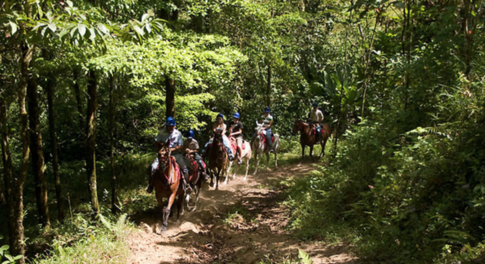 Horseback riding up to Volcano Arenal