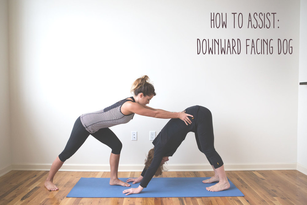 Pin now, practice later! How to adjust for downward dog.