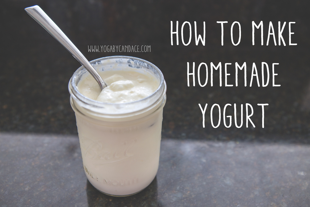 How To Make Homemade Yogurt — YOGABYCANDACE