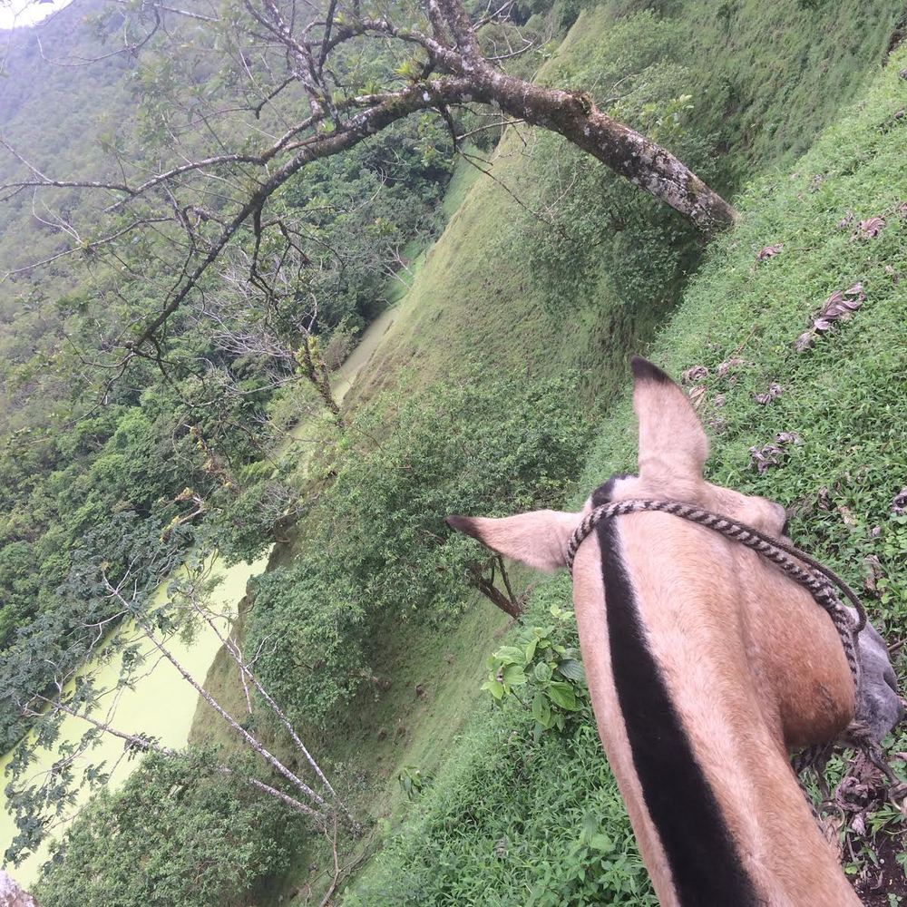 Horseback riding through the jungle at the base of Costa Rica's Volcano Arenal
