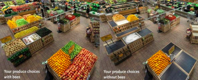 Your produce choices with/without bees