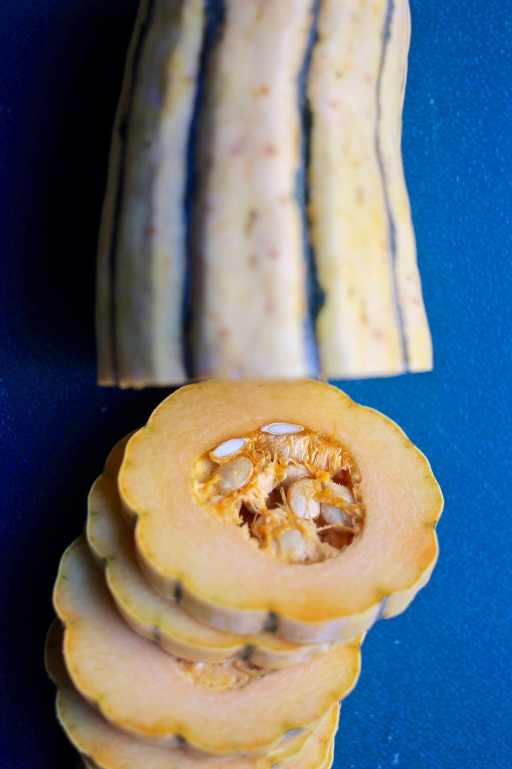 Delicata Squash; how gorgeous is this?