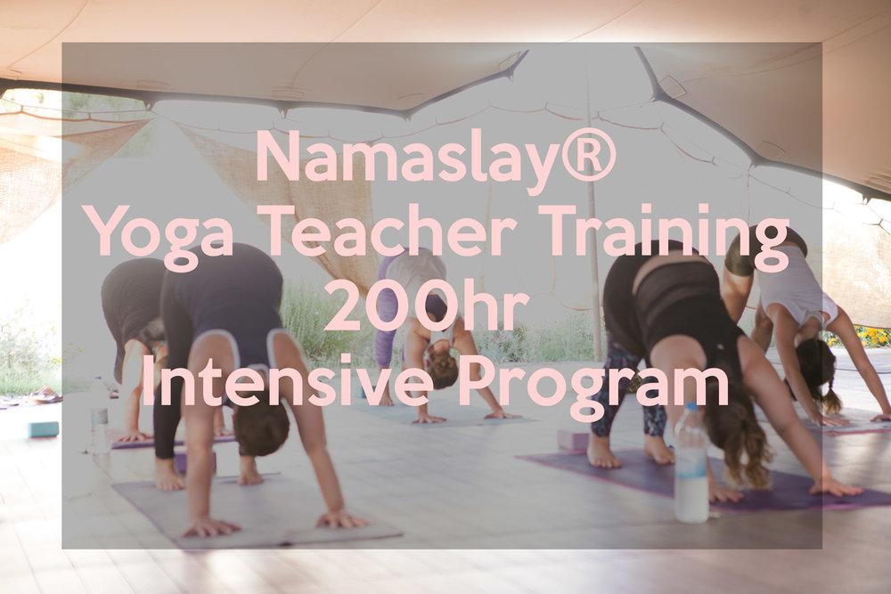 namaslay-training.jpg