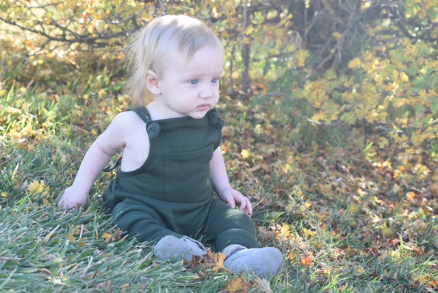 Mini Mioche Fleece Slouchy Overalls in Dark Army