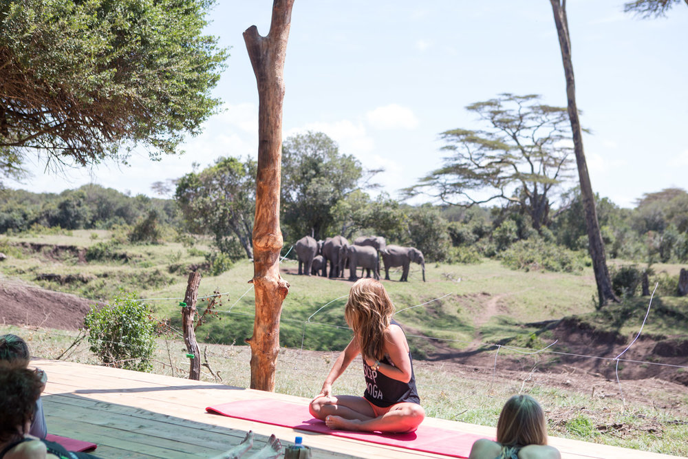 Yoga with a serious view at our Kenya Safari Yoga Retreat