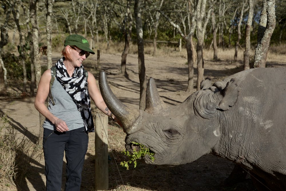 YBCer Lucy feeding Baracka, a black rhino at the Rhino Conservation Center at Ol Pejeta Conservancy