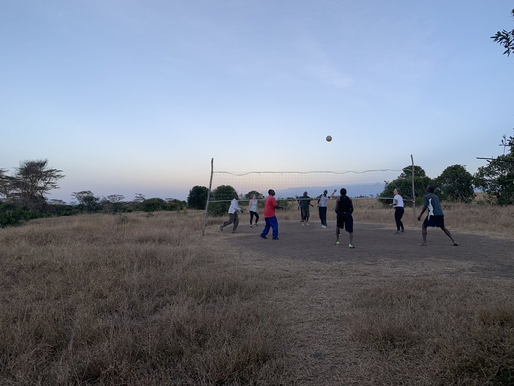 The YBC® Yogis were challenged to a very competitive game of Volleyball - another big highlight of this retreat was connecting with the amazing staff at The Safari Cottages.