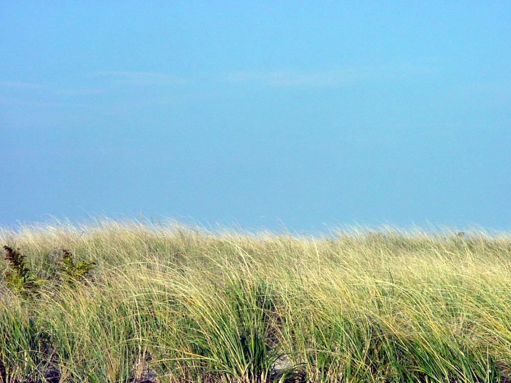 sand dunes 1b.jpg