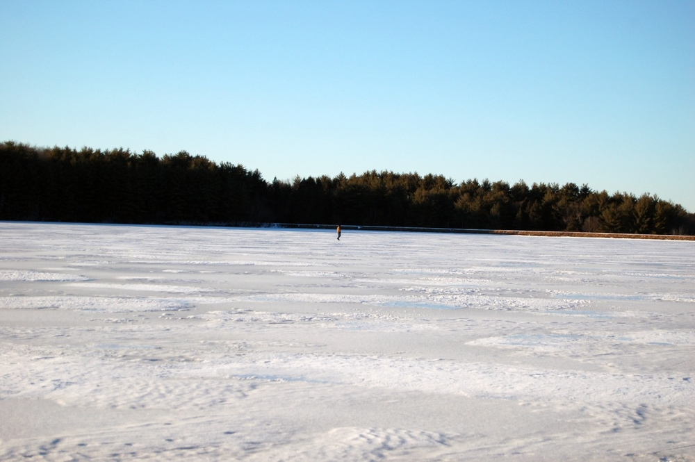alone on the ice.jpg