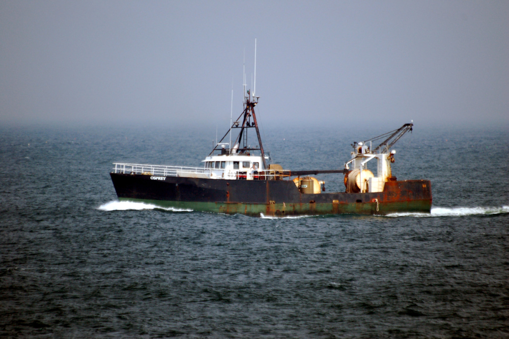 fishing ship.jpg