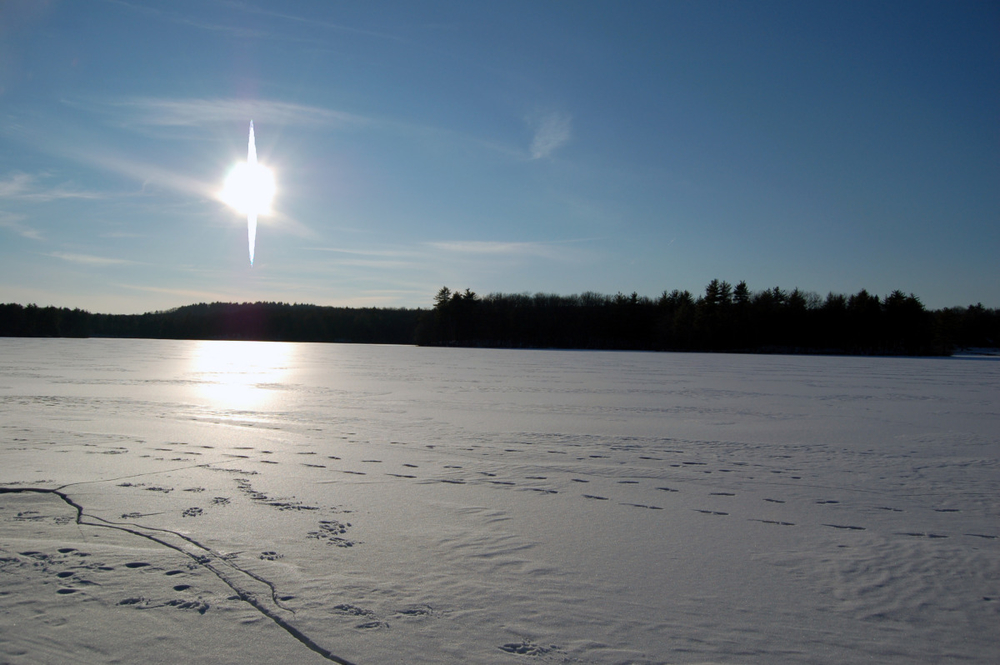footsteps on the ice.jpg