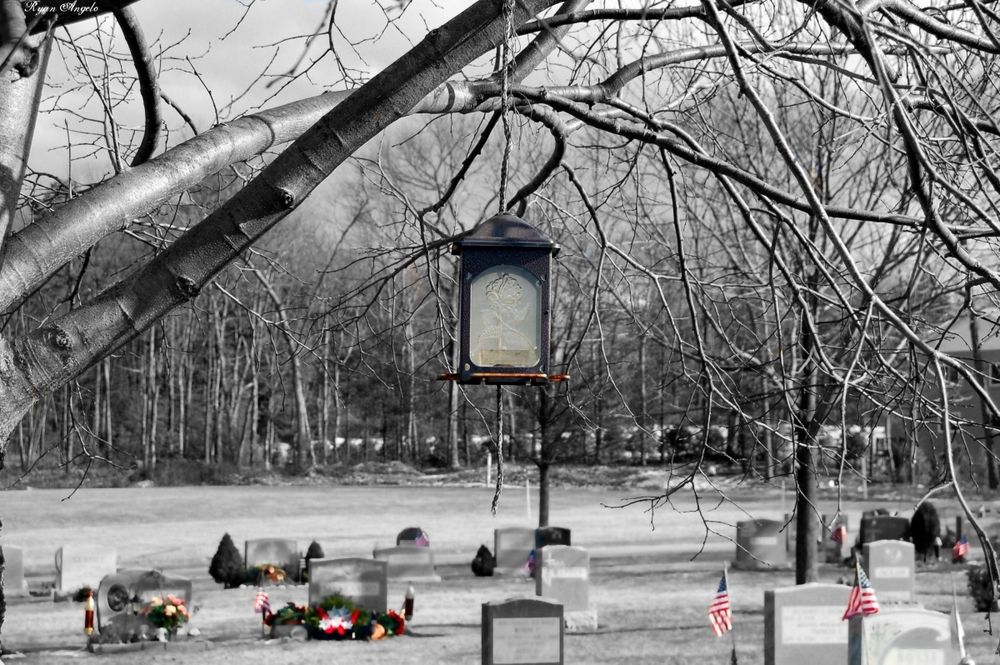 lantern with contrast color.jpeg