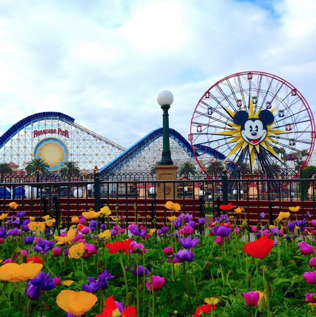 Photo from @DisneylandToday