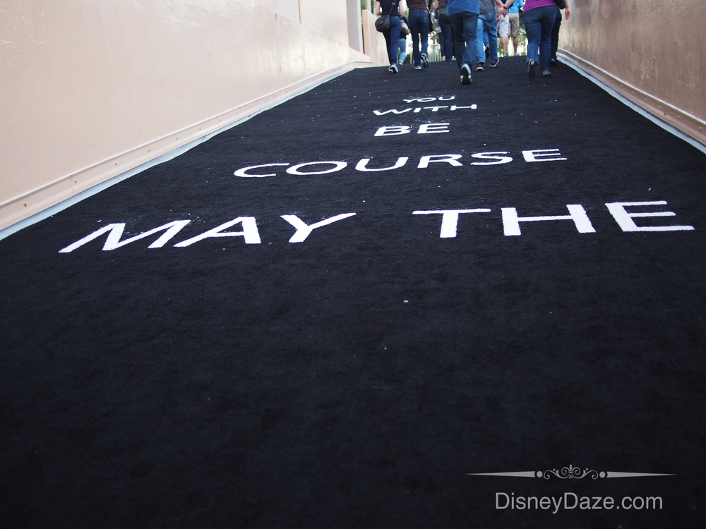 "When we went to pick up our runner packets, this was the ""black carpet"""