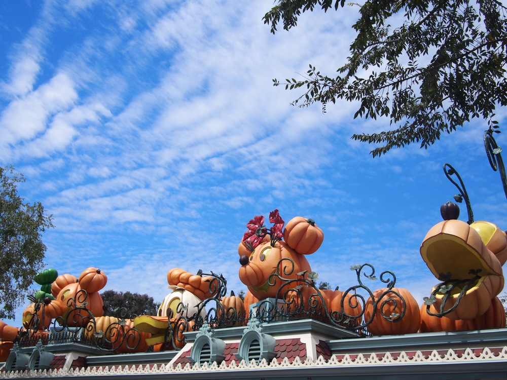 Main Gate Halloween decorations.