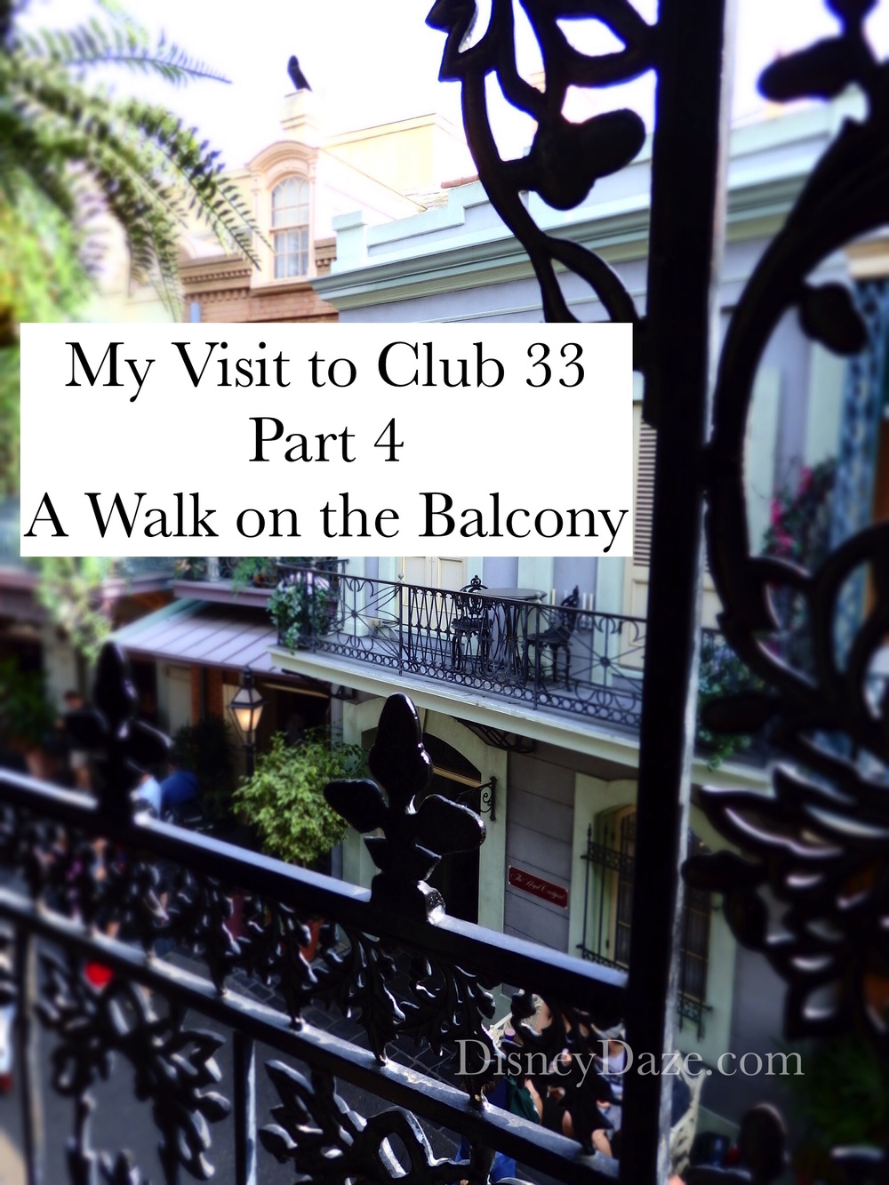 My Visit to Club 33 - Part 4, disneydaze.com