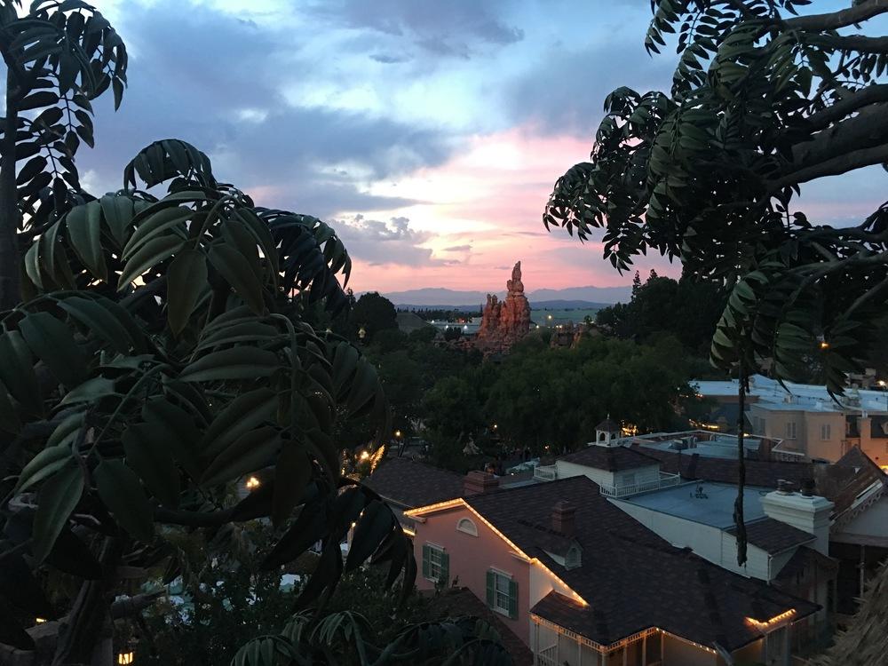 View from Tarzan's Treehouse