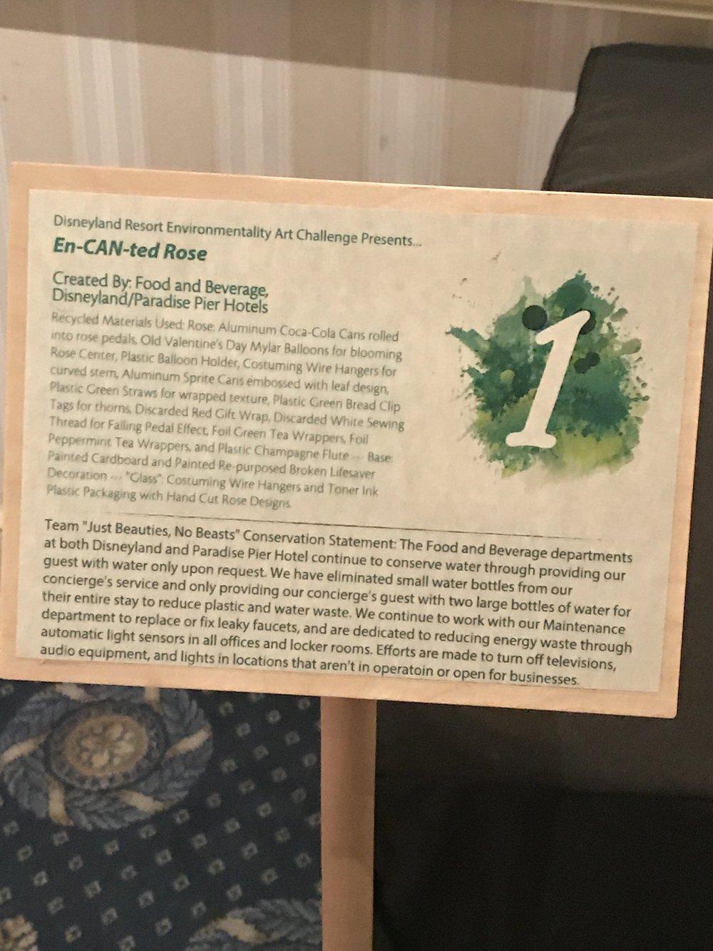 environmental 2017 art 19.JPG