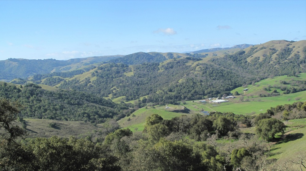 View from Mt. Burdell 2013.JPG