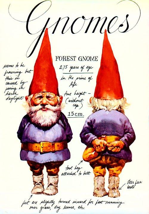 gnomebookcover.jpg