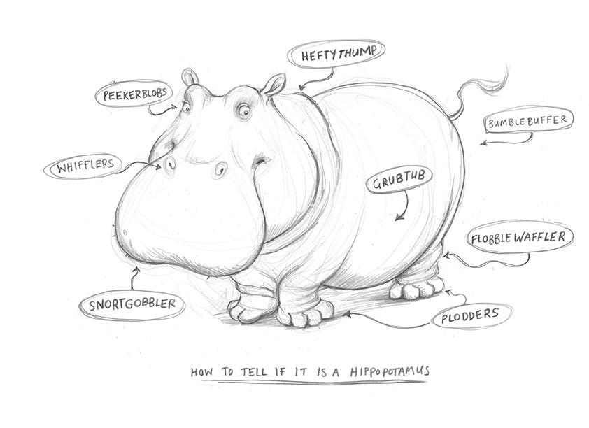 hipponatomy-copy.jpg
