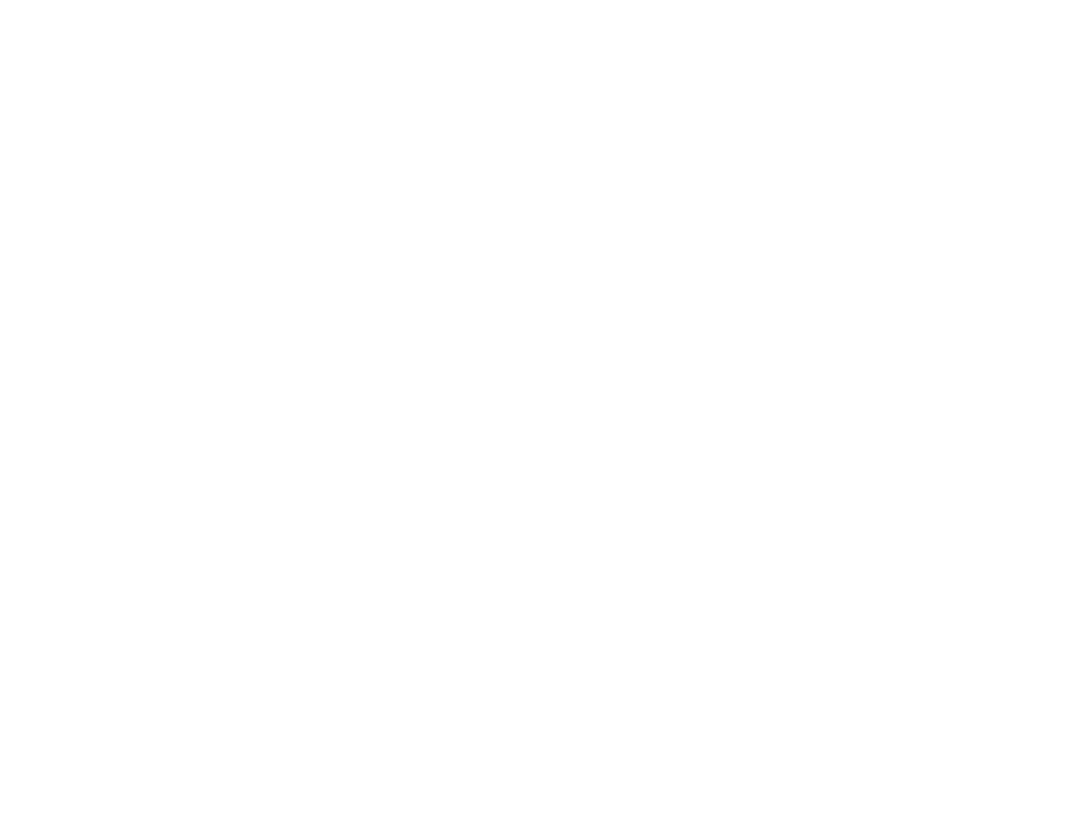 The Dark Ice Project