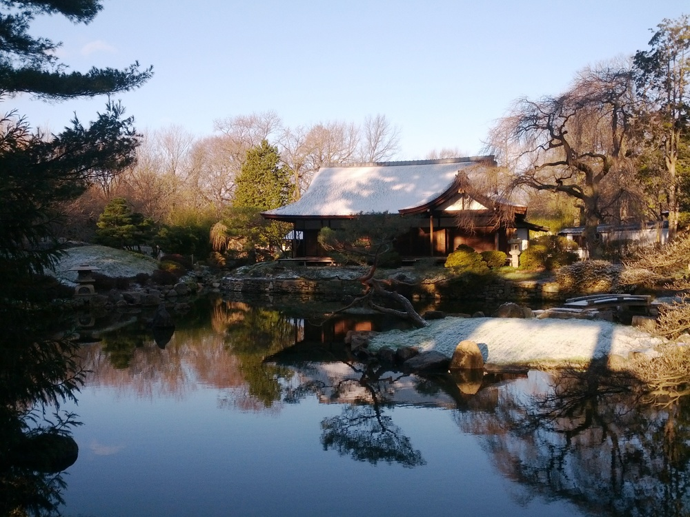 A light dusting of snow in January at Shofuso
