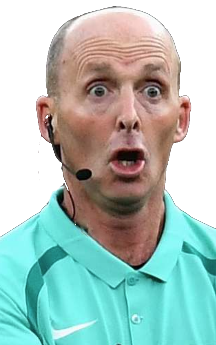 WHo, me?:  REFEREE MIKE DEAN