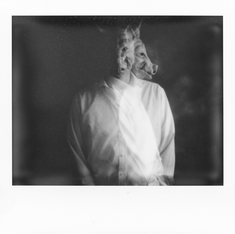 polaroid_800-1-2.jpg