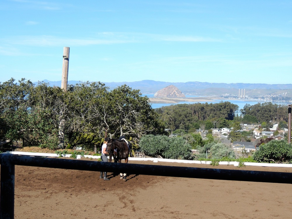 The arena with a view of the estuary and Morro Rock