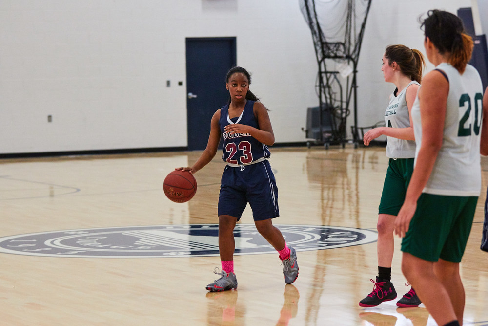Girls JV Basketball vs. High Mowing School  990- Dec 16 2015- Dec 16 2015 - 232.jpg