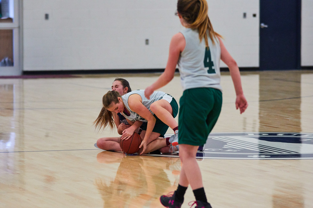 Girls JV Basketball vs. High Mowing School  1003- Dec 16 2015- Dec 16 2015 - 244.jpg
